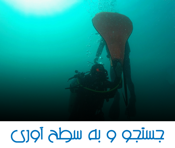 DIVEPERSIA SEARCH AND RECOVERY SDI